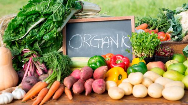 Органическое фермерство: преимущества и лучшие методы выращивания