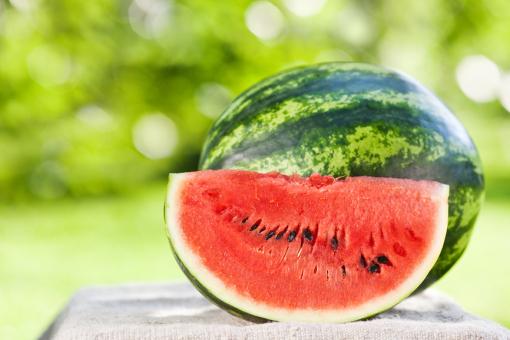 Прекращайте поливать арбузы - правила полива для получения максимально сладких плодов