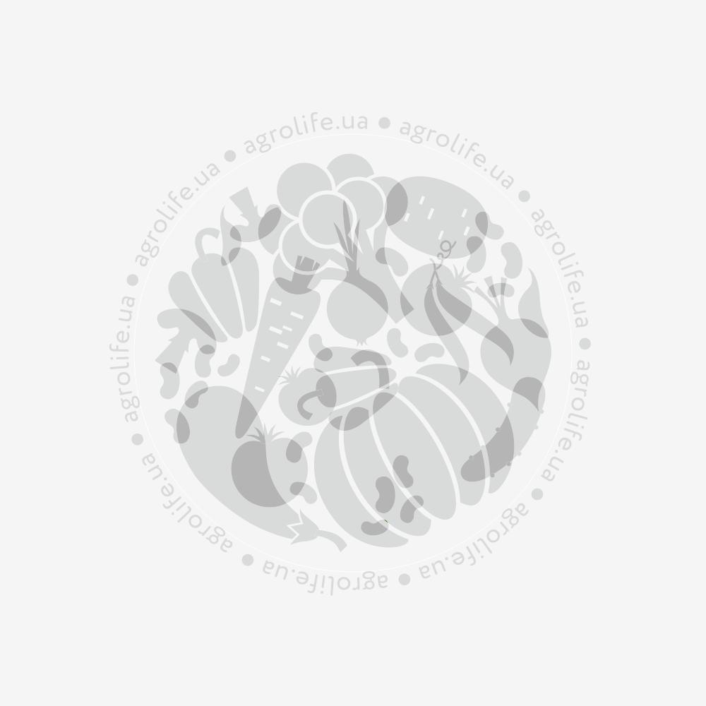 Лопатка садовая широкая из углеродистой стали, удлиненная прорезиненная рукоятка 3550A, Оазис