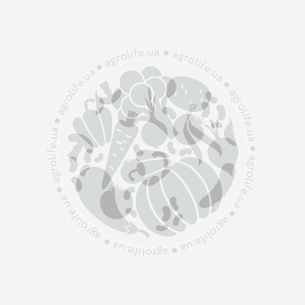 """Грабелька """"веерная"""" для сбора листвы с удлиненной прорезиненной рукояткой 9361G, Оазис"""