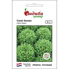 КАНКАН / CANCAN — салат, Hazera (Садыба Центр)