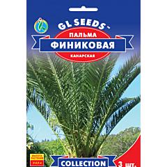 Пальма финиковая Канарская, GL SEEDS