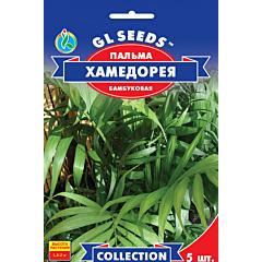 Пальма бамбуковая Хамедорея, GL SEEDS