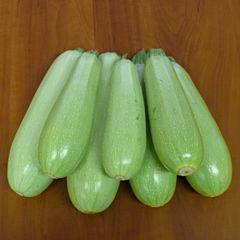 НЕМО F1 / NEMO F1 — Кабачок, Lark Seeds
