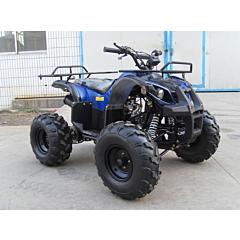Квадроцикл LZ110-4, Spark