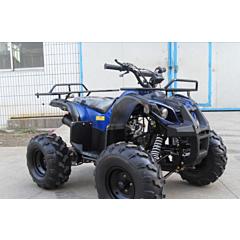 Квадроцикл SP125-5, Spark