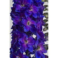 Дельфиниум Candle Violet Shades F1, Sakata