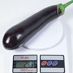 КС 5070 F1 / KS 5070 F1 — Баклажан, Kitano Seeds