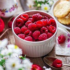 Саженцы малины Глен Файн, красная среднеспелая (Професійне насіння)