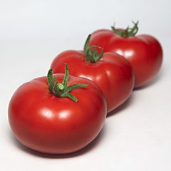 КС 301 F1 / KS 301 F1 - Томат Индетерминантный, Kitano Seeds