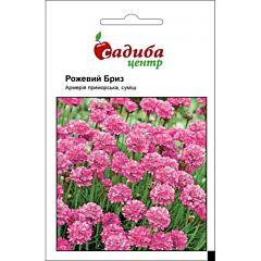 Армерия Приморская Розовый Бриз, Hem Zaden (Садыба Центр)