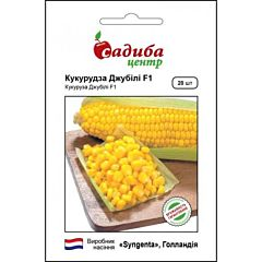 ДЖУБИЛИ F1 / DZHUBILI F1 — кукуруза, Syngenta (Садыба Центр)