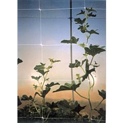 Шпалерная сетка для огурцов HORTINET, TENAX