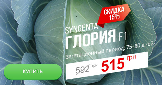Скидка 15% на семена капусты