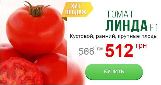 томат Линда