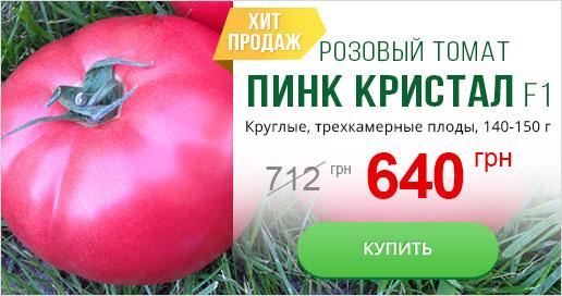 розовый томат
