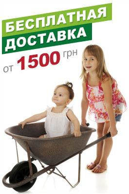 Бесплатная доставка