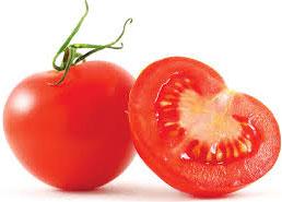 Подготовка к посеву томатов